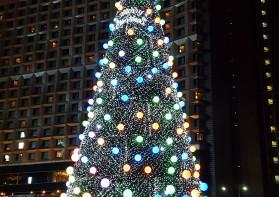 서울 중심부를 밝힌 성탄트리