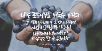 요한복음 15장 5절
